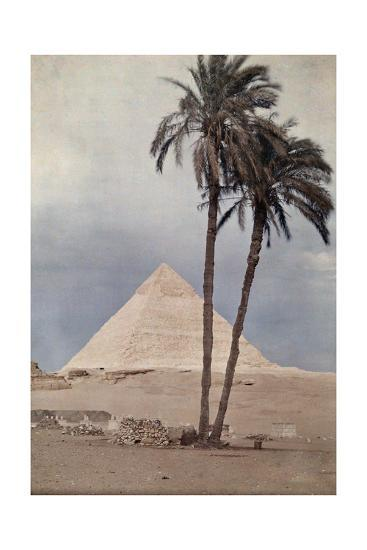 Palm Trees Stands in the Foreground of One of the Pyramids of Giza-Gervais Courtellemont-Photographic Print