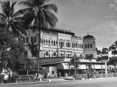 https://imgc.artprintimages.com/img/print/palm-trees-surrounding-the-raffles-hotel_u-l-p732050.jpg?p=0