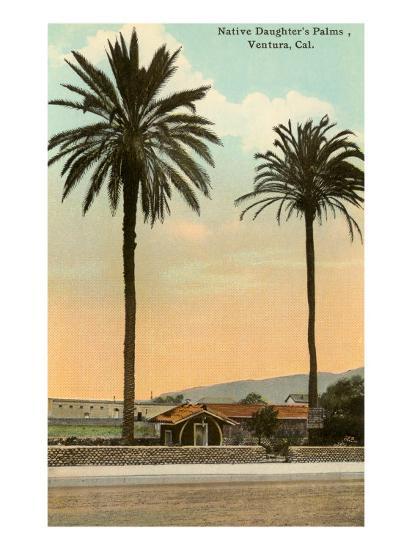 Palm Trees, Ventura--Art Print