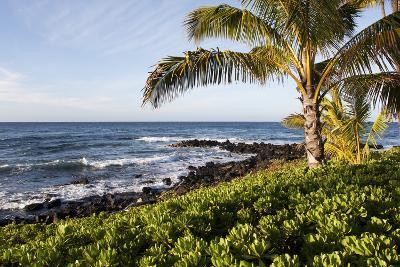 Palm Trees, Volcanic Rock, and Surf on the Beaches at Poipu-Marc Moritsch-Photographic Print