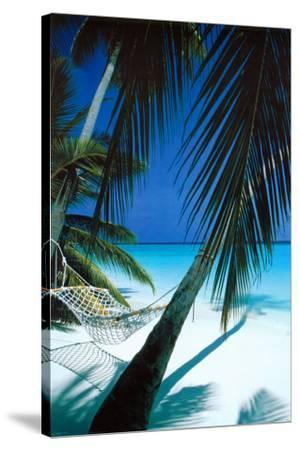 Palm View Hammock