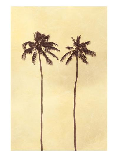 Palm Vista II-Thea Schrack-Premium Photographic Print