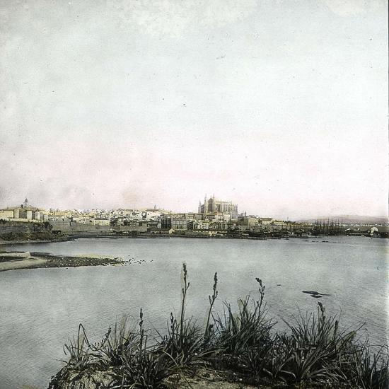 Palma (Island of Majorca, Balearics, Spain), Panorama, Circa 1895-Leon, Levy et Fils-Photographic Print