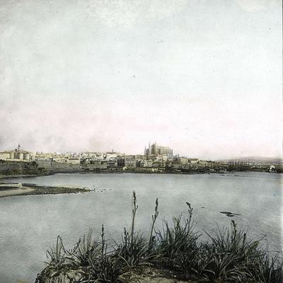 https://imgc.artprintimages.com/img/print/palma-island-of-majorca-balearics-spain-panorama-circa-1895_u-l-q10vv5d0.jpg?p=0