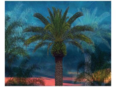 Palmae Vista I-Melinda Bradshaw-Art Print