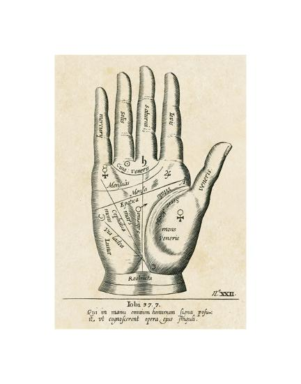Palmistry: Palm Diagram--Giclee Print