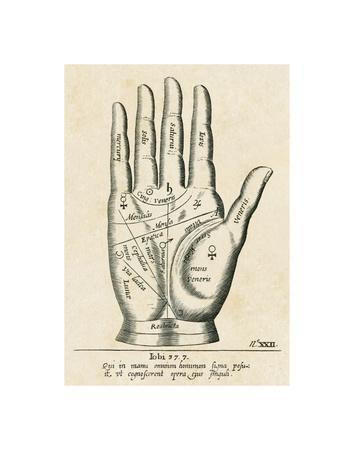 https://imgc.artprintimages.com/img/print/palmistry-palm-diagram_u-l-f5mupn0.jpg?p=0