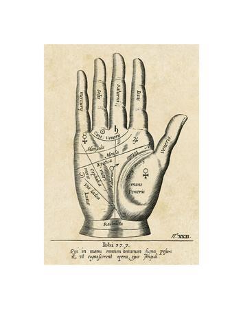 https://imgc.artprintimages.com/img/print/palmistry-palm-diagram_u-l-f8d2mi0.jpg?p=0