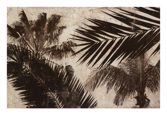 Palms 2-JB Hall-Premium Giclee Print
