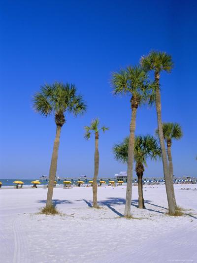 Palms and Beach, Clearwater Beach, Florida, USA-Fraser Hall-Photographic Print