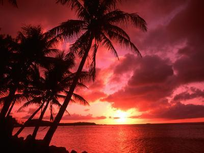 Palms And Sunset at Tumon Bay, Guam-Bill Bachmann-Photographic Print