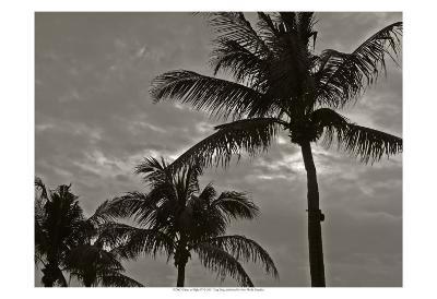 Palms at Night IV-Tang Ling-Art Print