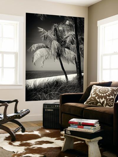 Palms on a White Sand Beach in Key West - Florida-Philippe Hugonnard-Wall Mural