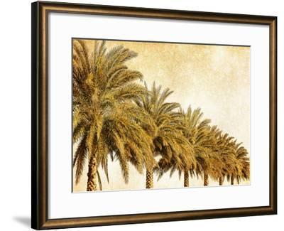 Palms on Brown I-Skip Nall-Framed Art Print