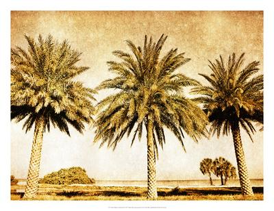 https://imgc.artprintimages.com/img/print/palms-on-brown-ii_u-l-f97oi40.jpg?p=0