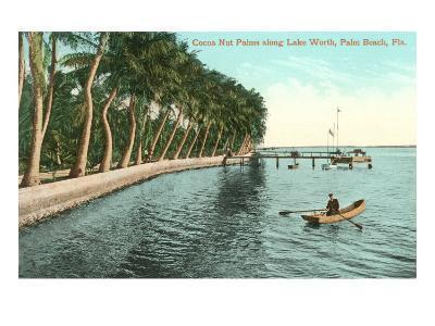 Palms on Lake Worth, Palm Beach, Florida--Art Print