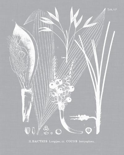 Palmyra I-Maria Mendez-Giclee Print
