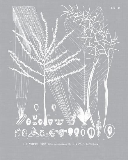 Palmyra II-Maria Mendez-Giclee Print