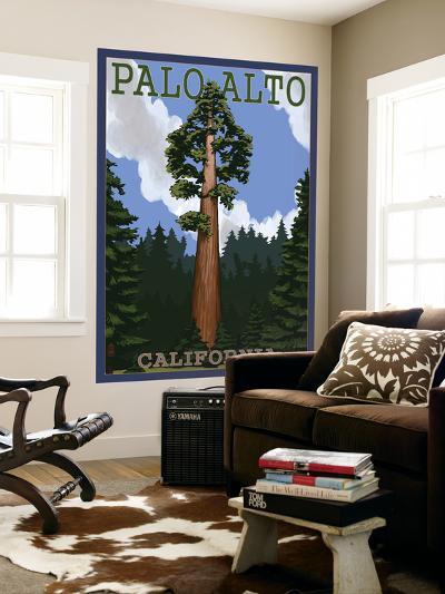 Palo Alto, California - California Redwoods-Lantern Press-Wall Mural