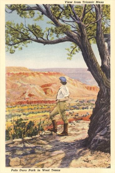 Palo Duro, Triassic Mesa--Art Print