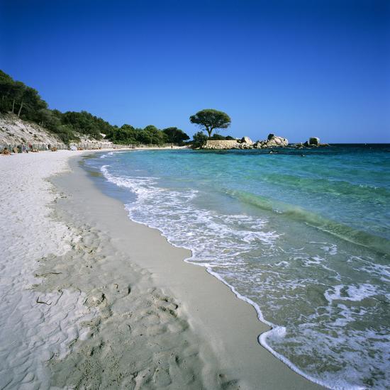 Palombaggia Beach Near Porto Vo South East Corsica France Mediterranean Europeby Stuart Black