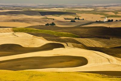 Palouse Fields, from Steptoe Butte, Steptoe Butte Sp, Washington-Michel Hersen-Photographic Print