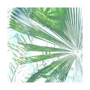 Emerald Palms I by Pam Ilosky