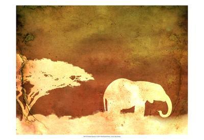 Safari Sunrise I