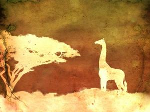 Safari Sunrise IV by Pam Ilosky