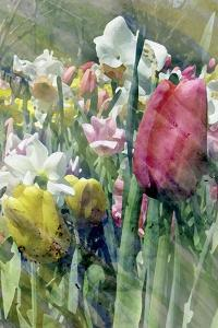 Spring at Giverny III by Pam Ilosky