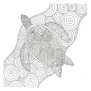 Wave Riding Turtle by Pam Varacek