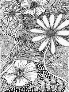 Wild Daisys by Pam Varacek
