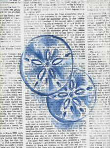 Written Sand Dollars by Pam Varacek