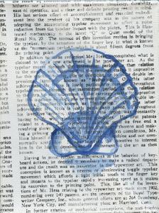 Written Seashell by Pam Varacek