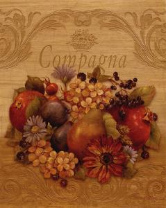 Compagna by Pamela Gladding