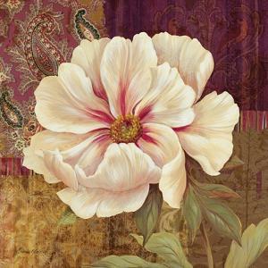 Esperance Peony by Pamela Gladding