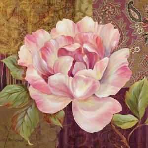 Esperance Rose by Pamela Gladding