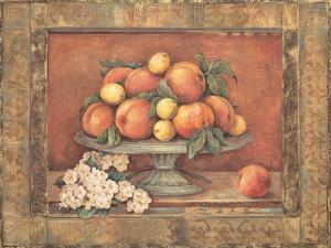 Florentine Peach by Pamela Gladding