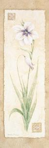 Gladiola by Pamela Gladding