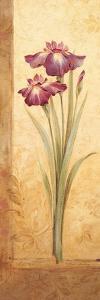 Grandiflora I by Pamela Gladding