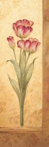 Grandiflora IV by Pamela Gladding