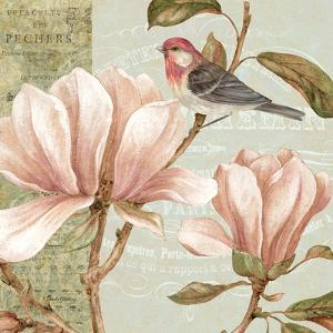 Magnolia Collage I by Pamela Gladding