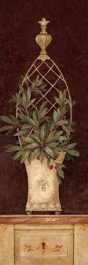 Olive Topiary I by Pamela Gladding