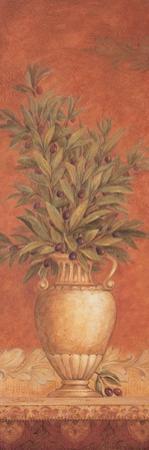 Tuscan Reverie I by Pamela Gladding
