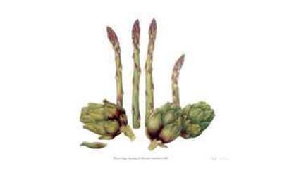 Asparagus and Minature Artichokes