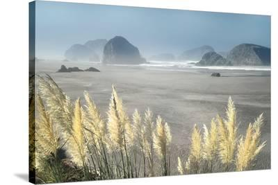 Pampas Beach-Dennis Frates-Stretched Canvas Print