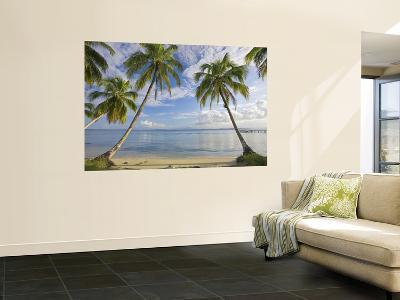 Panama, Bocas Del Toro Province, Carenero Island, Palm Trees and Beach-Jane Sweeney-Giant Art Print