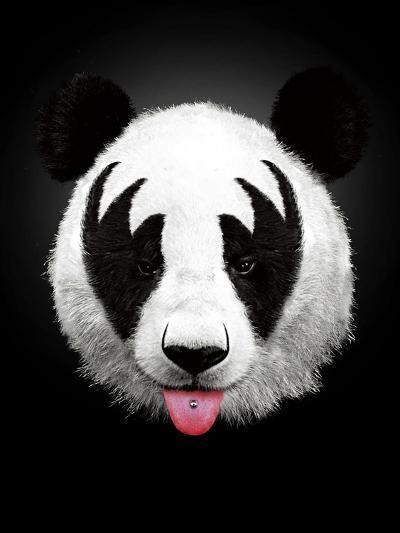 Panda Rocks-Robert Farkas-Art Print