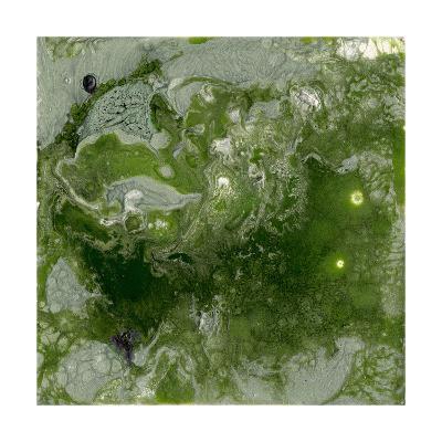 Pangaea I-Alicia Ludwig-Premium Giclee Print