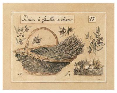 Image D Olivier panier À feuilles d'olivier art printlaurence david   art